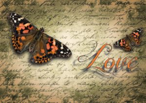 butterfly love blog photo